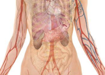 Co jeść w chorobie wrzodowej żołądka lub dwunastnicy?
